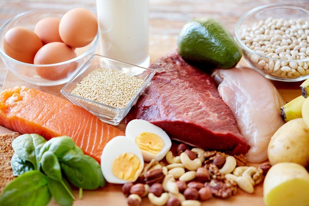 نقش پروتئین در عضله سازی