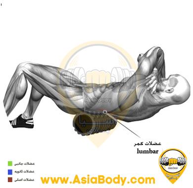 فوم رولر عضلات پایینی پشت