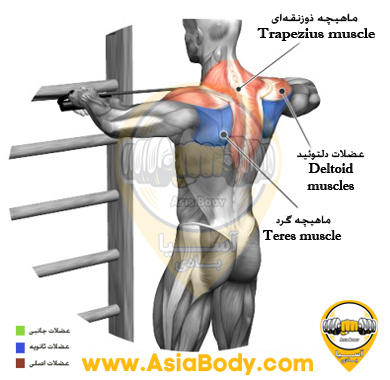UPPER BACK STANDING WITH ELASTIC 2