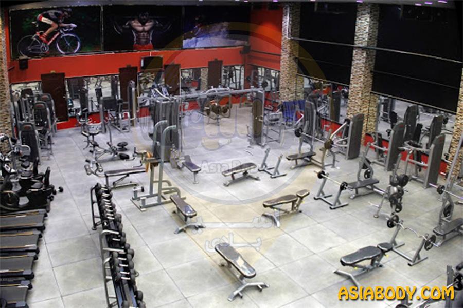 باشگاه پارسه پلاس شیراز